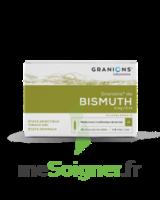 Granions De Bismuth 2 Mg/2 Ml S Buv 10amp/2ml à Saint-Médard-en-Jalles
