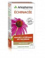 Arkogélules Echinacée Gélules B/45 à Saint-Médard-en-Jalles