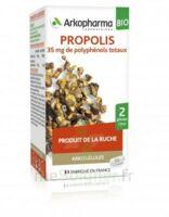Arkogélules Propolis Bio Gélules Fl/45 à Saint-Médard-en-Jalles
