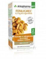 Arkogélules Fenugrec Bio Gélules Fl/40 à Saint-Médard-en-Jalles