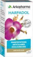 Arkogelules Harpagophyton Gélules Fl/150 à Saint-Médard-en-Jalles