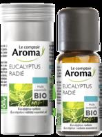 Huile Essentielle Bio Eucalyptus Radié à Saint-Médard-en-Jalles