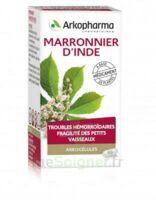 Arkogelules Marronnier D'inde Gélules Fl/45 à Saint-Médard-en-Jalles