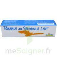 Calendula Lhf Pom T/20g à Saint-Médard-en-Jalles