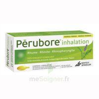 Perubore Caps Inhalation Par Vapeur Inhalation Plq/15 à Saint-Médard-en-Jalles