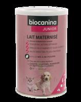 Biocanina Lait Poudre Maternisé B/400g à Saint-Médard-en-Jalles