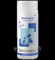 Biocanina Shampooing éclat Pelage Blanc 200ml à Saint-Médard-en-Jalles