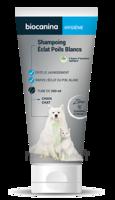 Biocanina Shampooing éclat Poils Blancs 200ml à Saint-Médard-en-Jalles