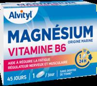 Govital Magnésium Vitamine B6 Comprimés B/45 à Saint-Médard-en-Jalles