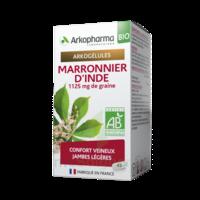 Arkogélules Marronnier D'inde Bio Gélules Fl/45 à Saint-Médard-en-Jalles