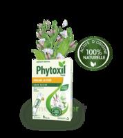 Phytoxil Toux Sans Sucre Sirop Adulte Enfant +6 Ans 12 Sachets/10ml à Saint-Médard-en-Jalles
